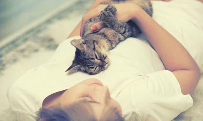 cat-sleep-on-my-chest